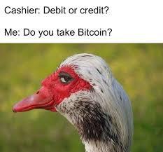 Smug Meme - bitcoin meme smug bird face steemit