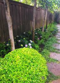 Shady Backyard Ideas by Landscape Ideas Best Solutions For Shade
