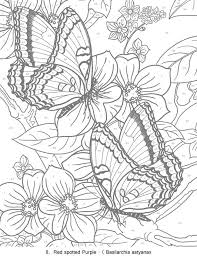 25 dover publications ideas coloring book