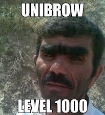 Bushy Eyebrows Meme - i knit my brows a punny poem http www amnottheonlyone com i