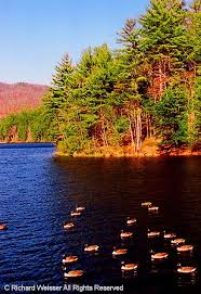 Georgia scenery images 46 best north georgia mountains images georgia jpg