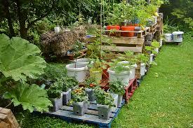 Patio Vegetable Garden Ideas The Beautiful Vegetable Garden Ideas With The Vegetable Garden