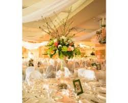 draping rentals ceiling drape drapery rental for wedding party in chicago