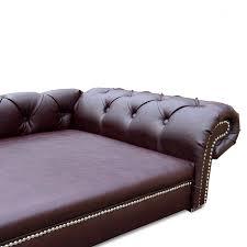 canapé pour chien grande taille canapé pour grand chien exklusiv zendart design