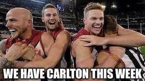 Carlton Meme - carlton copping plenty of internet memes thanks to recent poor