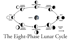 the phases of the moon a middle science on lesson