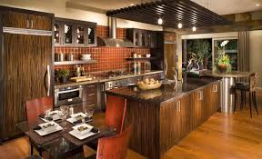 kitchen cabinets remodeling ideas curious photo kitchen cabinets organizers magnificent kitchen