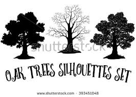 organic trees vector silhouettes free vector stock