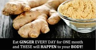 Is Ginger Root A Vegetable - health benefits of ginger root facts nutritional info side effects