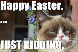 Funny Easter Memes - happy easter funny images pictures and easter meme