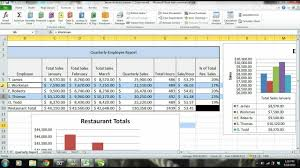Daily Sales Report Template Excel Free Ms Excel 2010 Tutorial Employee Sales Performance Report