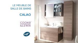 Paroi Baignoire Castorama by Beautiful Rideau Salle De Bain Castorama Ideas Home Decorating