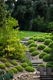 do it yourself cheap and easy backyard landscaping solutions for