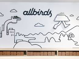 allbirds opens store in nyc photos business insider
