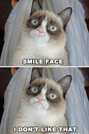 Smiling Cat Meme - grumpy cat smile face
