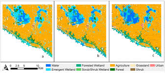 remote sensing free full text the effects of point or polygon