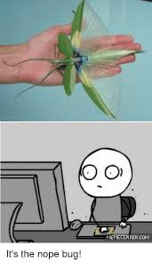 Nope Meme - o o memecentercom it s the nope bug meme on me me