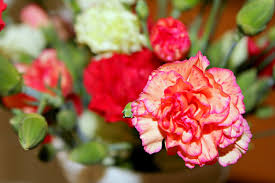 Flowers Near Me - i u0027m sharon with you sunshine flowers and pitcher love