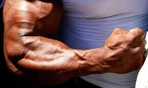 Best Forearm - the best forearm exercises and workouts for mass
