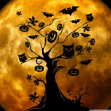 halloween wallpapers for android phone halloween owls and bats orange hd desktop wallpaper widescreen