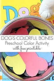 best 25 pet theme preschool ideas on pinterest pet theme