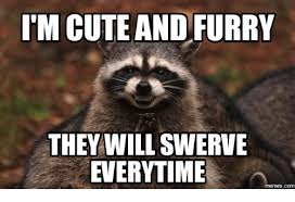 Swerve Memes - tm cute and furry they will swerve everytime memesc furry