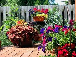 Container Flower Gardening Ideas Container Flower Garden Ideas Ideas Container Gardening Flower