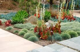 photo of desert landscaping ideas arizona desert landscape design