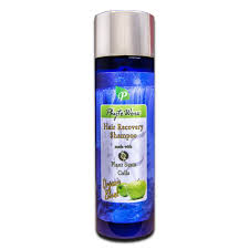 Stem Cells Hair Loss Amazon Com Phytoworx Organic Hair Loss Shampoo With Plant Stem