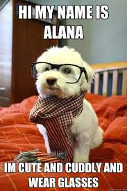 Alana Meme - hi my name is alana im cute and cuddly and wear glasses hipster