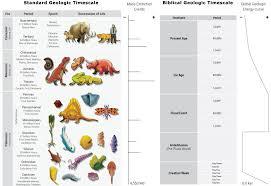 flood geology schism creation com