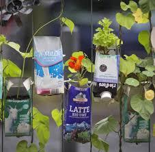 Tropische Pflanzen Im Garten Tipps Für Urban Gardening Und Pflanzen Dem Balkon Welt