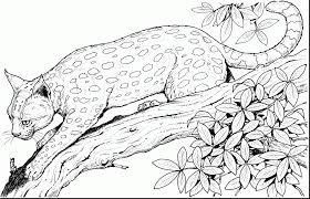 astounding big coloring pages alphabrainsz net