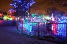 columbus zoo christmas lights columbus zoo winter wild lights 4850 west powell rd powell oh