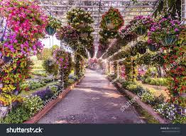 Flower Tunnel Arch Summer Stock Photo 614543312 Shutterstock