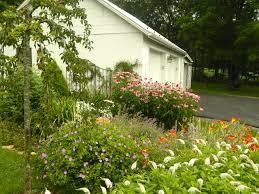 pam u0027s english cottage garden