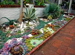 Houzz Garden Ideas Inspiration Ideas Houzz Landscaping Furniture Cactus