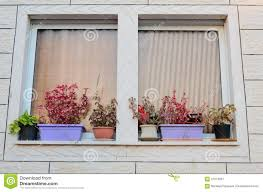 Window Sill Curtains A Window With Curtains And Flower Pots On The Windowsill Outside