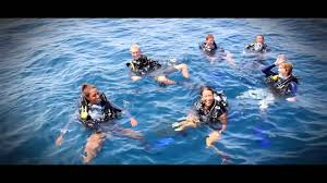 padi open water scuba instructor owsi master divers scuba