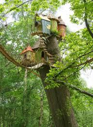 oakdown treehouse wiltshire canopy stars idolza