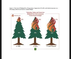 Wild Fires In Idaho And Montana by Idaho Vs Usfs Forest Service Spends 52 Of Annual Budget Fighting