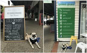 green grass home u0026 body and park bench espresso bar brisbane