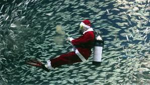 ten christmas gift ideas for divers dip u0027n dive