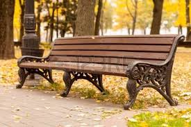 Benches In Park - park benches on a rainy day stock photo picture and royalty free