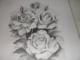flowers pencil drawing hd wallpapers flower sketches images all