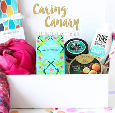 chemo gift basket caring canary how grief inspired a new gift package business