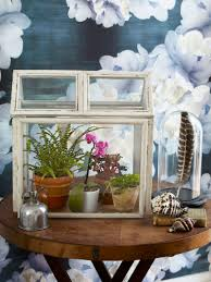 make terrariums how to build terrariums