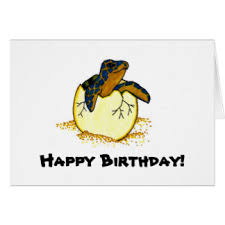 sea turtle birthday cards sea turtle birthday greeting cards sea