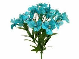 turquoise flowers 21 best turquoise aqua flowers images on aqua blue