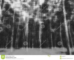 halloween background colors abstract blur forest for halloween background stock photo image
